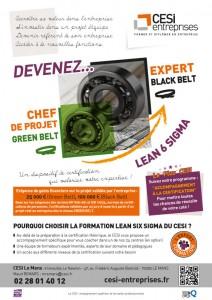 Affiche Lean 6 Sigma CESI entreprises